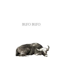 Pincha la portada para escuchar y descargar el EP de Bufó-Bufó, el hola y adiós de este cuarteto moreliano.