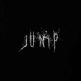 Junip-Junip-2013-LVÚ