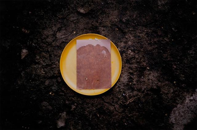 """Gabriel Orozco. """"Quesadilla Disc"""" (2005)."""
