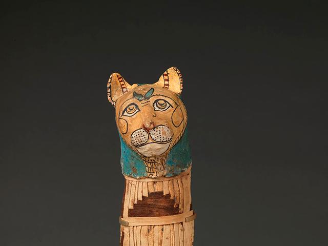Momia de gato © Musée du Louvre, dist. RMN-GP / Christian Décamps